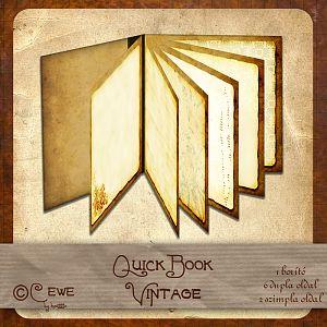 QuickBook Vintage