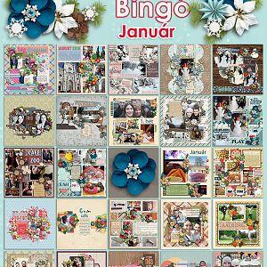 Januári bingó