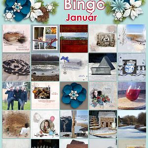 Bingo_január_Ilonaeva_24