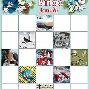 bingo_januar