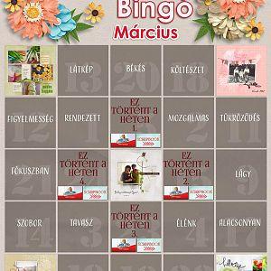 Bingo_március