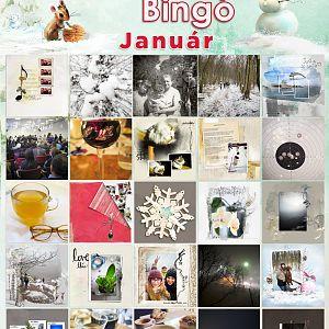 Bingo_január