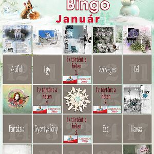 Bingó január - 9