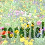Gyorstipp – képes betű