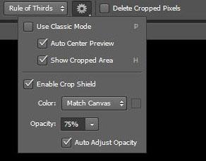 Photoshop CS6 crop