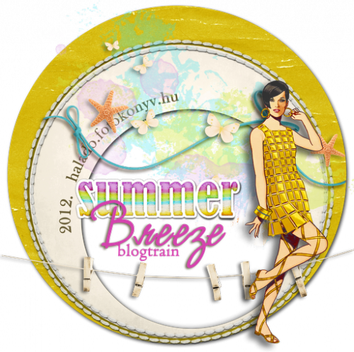 SummerBreeze logo