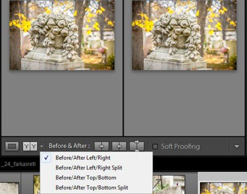 Lightroom 4 View