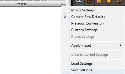 camera raw presets