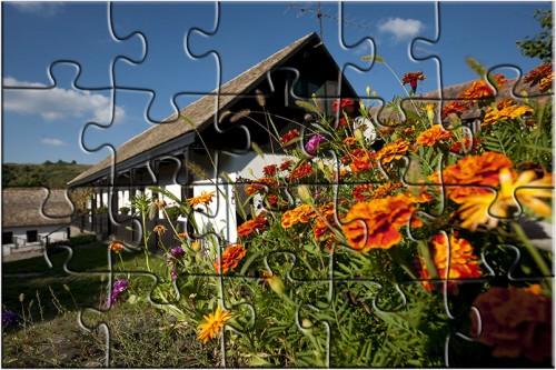 puzzle 2d