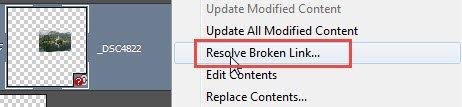 Resolve Broken Link