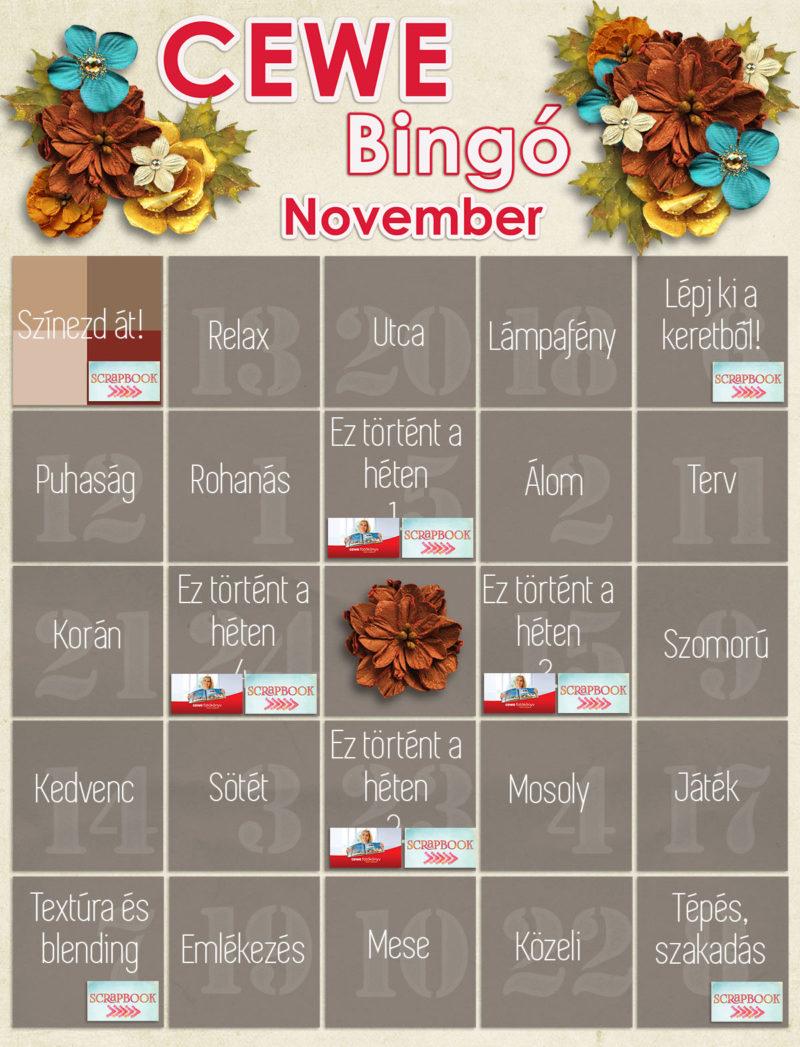 bingo_11