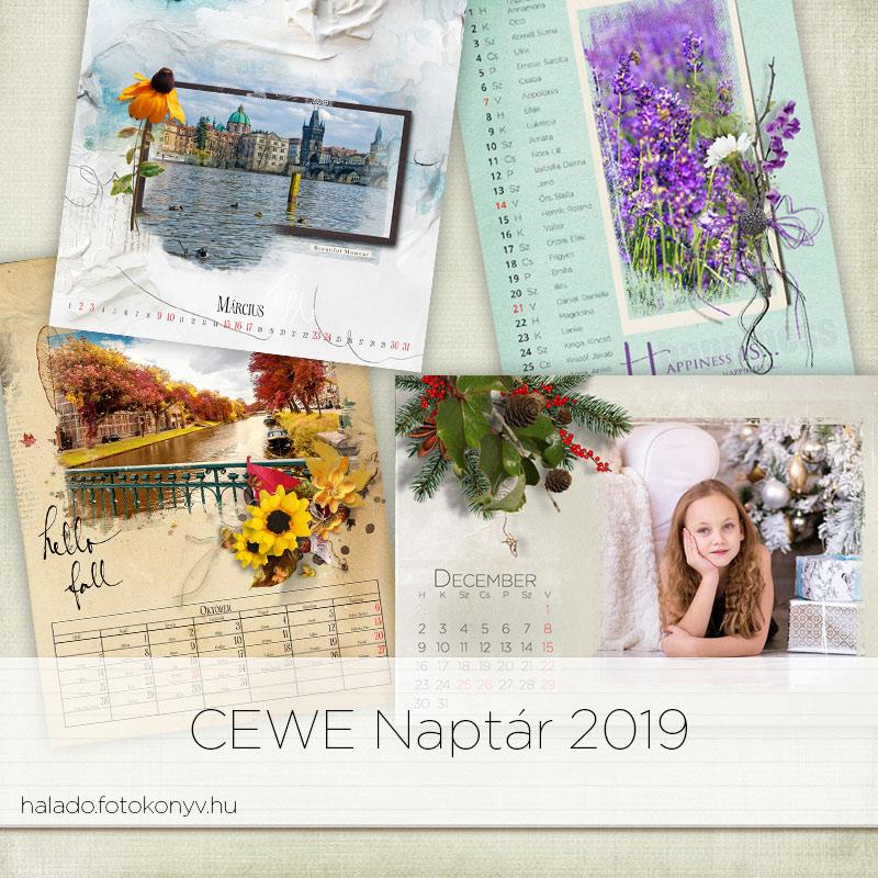 naptár szerkesztő 2019 CEWE naptár 2019 | Haladó CEWE FOTÓKÖNYV naptár szerkesztő 2019