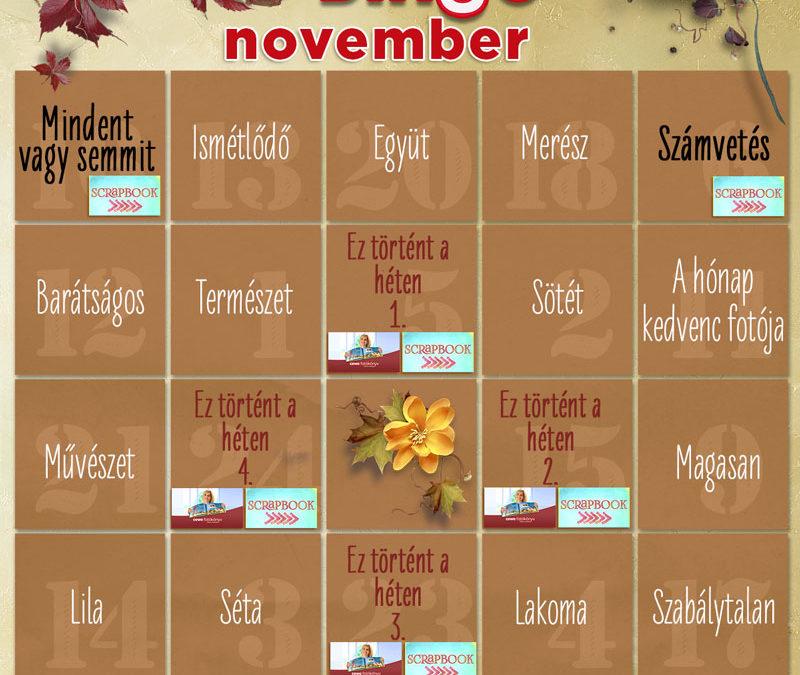 CEWE-Bingó – november