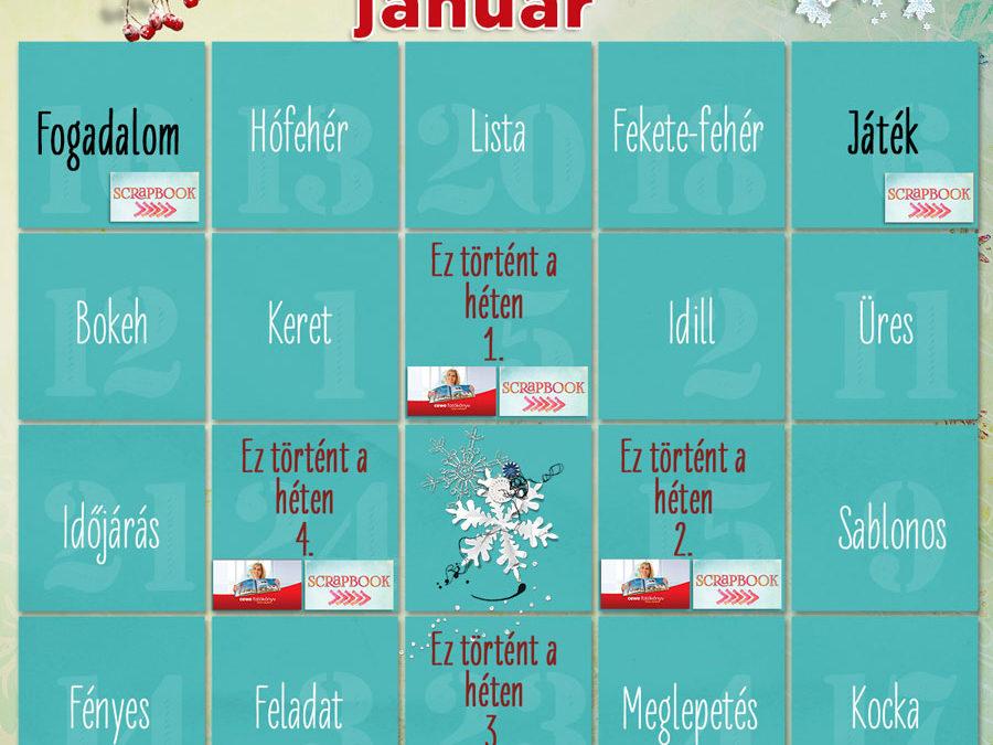 CEWE-Bingó – 2020. január