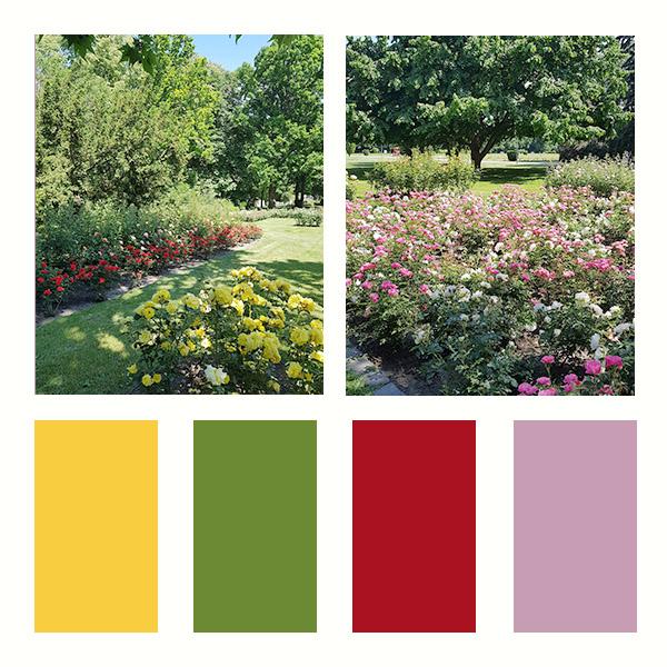 CEWE-Bingó – 2021. június – színkihívás